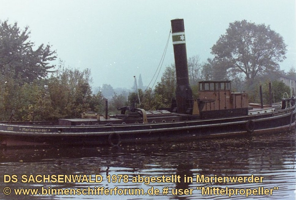 Sachsenwald 1978 (2)