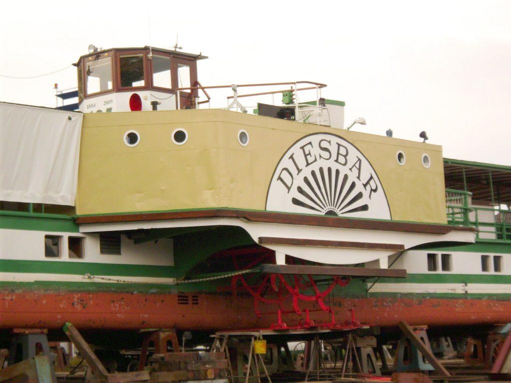DSCI0248